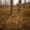 halloweenowo - cmentarz w Jaworzcu :)
