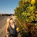 Zbieramy owocki na podróż powrotną