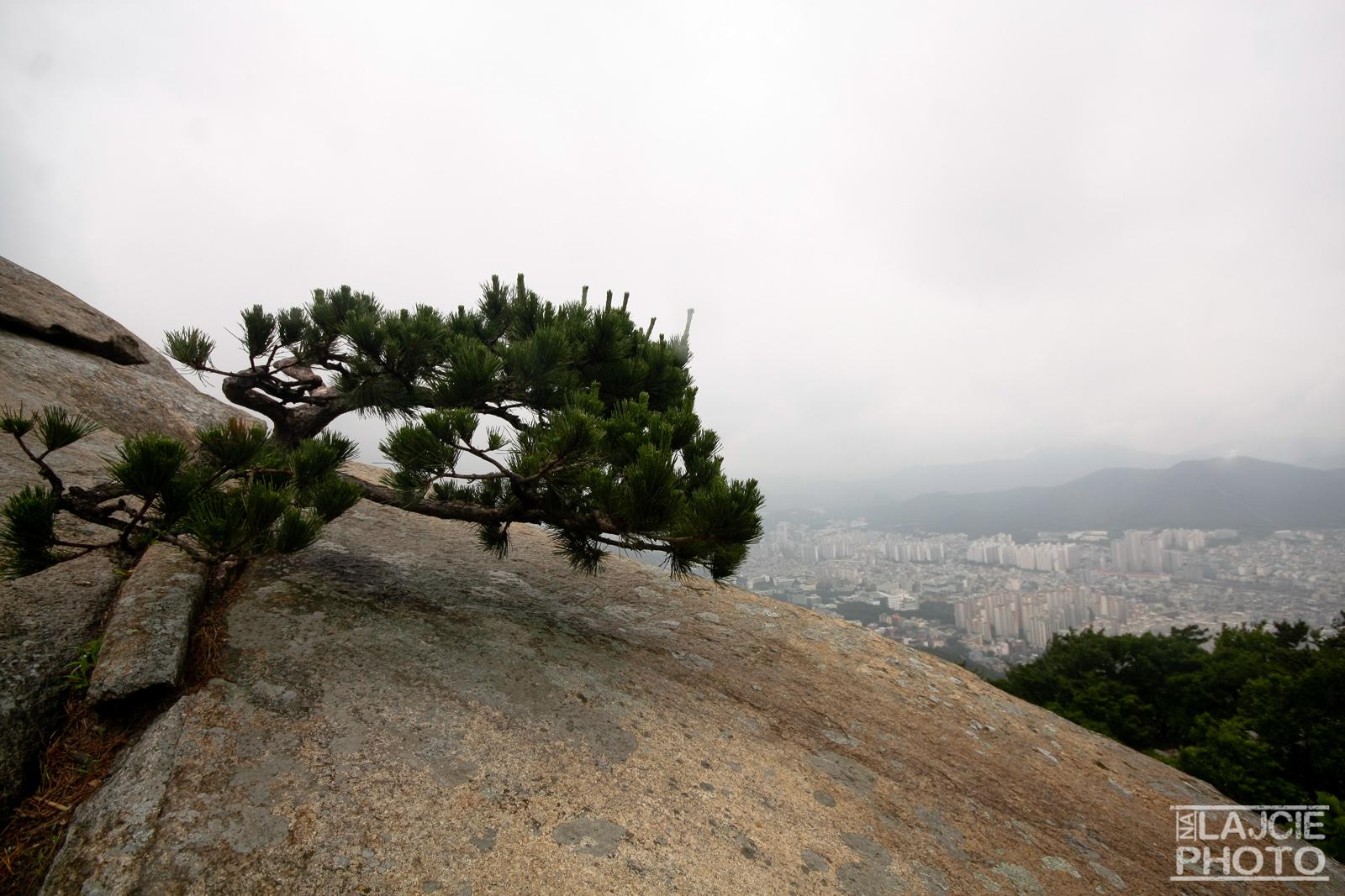 Powrót z Geumjeong Fortress do Busanu