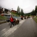 Pro-ekologiczne Zermatt :)