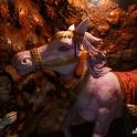 Mata Temple - kucyk