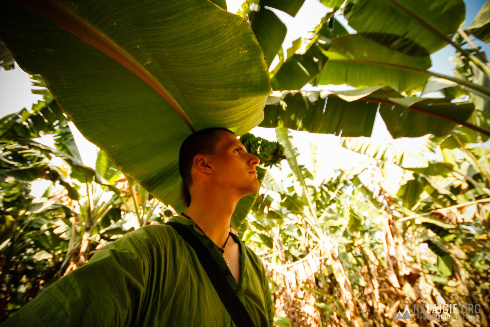 W bananowym gaju ;p