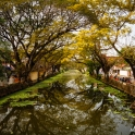 Miejskie kanały - początek Backwaters.