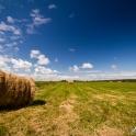 Przez pola i łąki.